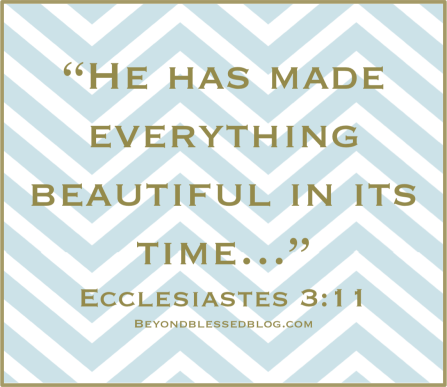 Ecclesiastes411 Beyond blessed blog