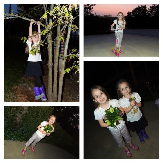 playing outside & they picked us fresh flowers
