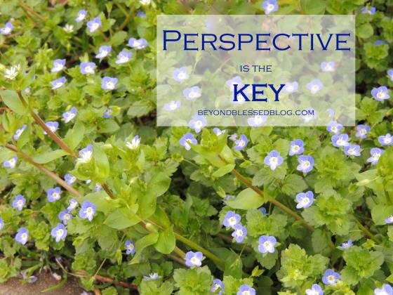 perspective beyondblessedblog